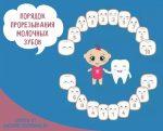 Порядок роста зубов – Последовательность роста зубов у детей